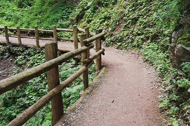 sentiero-andalo-molveno